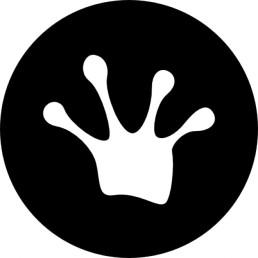 grenouille-patte-unique_318-38294